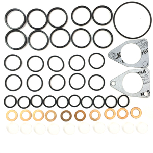Fuel Pump Repair Kits 800888 PE:10P