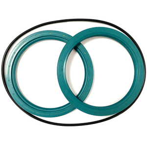 NBR Oil Seal DF 145*175*13 & 145*175*14 O Ring